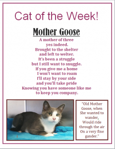cat of the week mother goose