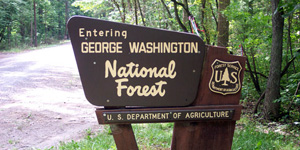 Camping in the George Washington National Forest