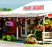 Mowery Orchard LLC