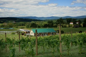 The Winery at Kindred Pointe Scenic View