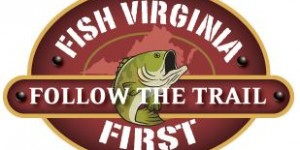 Fish VA First Logo